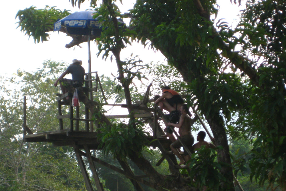 Climbing the ladder to success in preparation for the zipline.