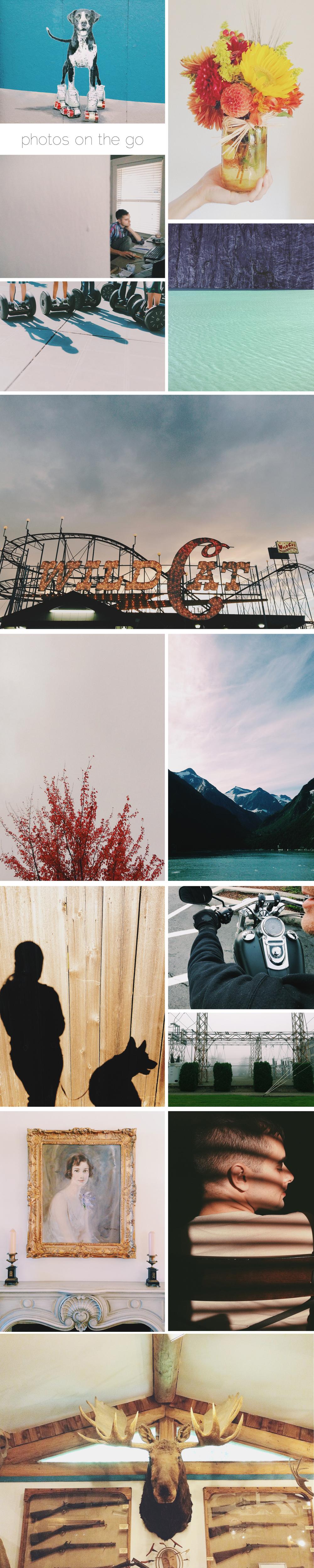LisaLupo_Collage.jpg