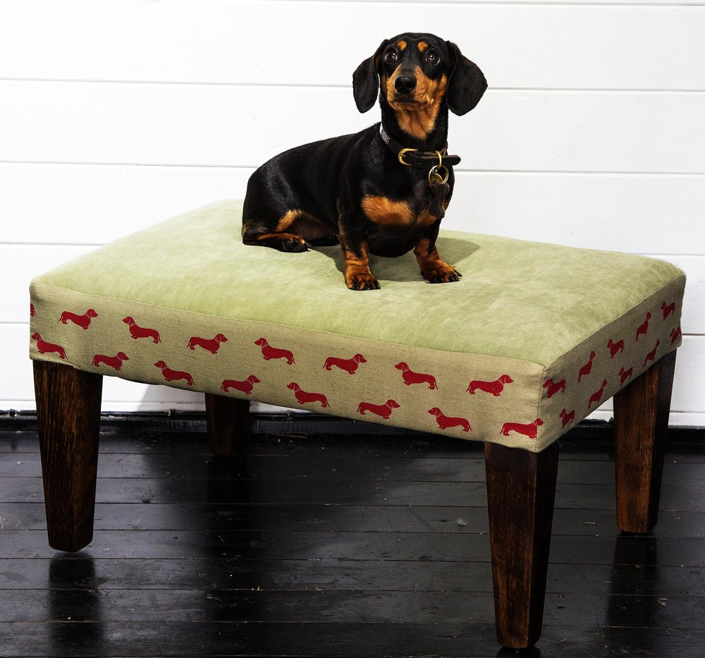 Small Dog Bed with wipeable top in stain resistant luxurious Impala and choice of dog borders/top covers/leg height