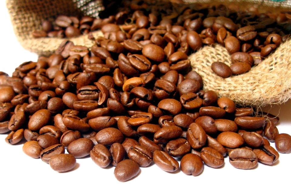 Jamaica Epicurean Escape - Coffee Village.jpg