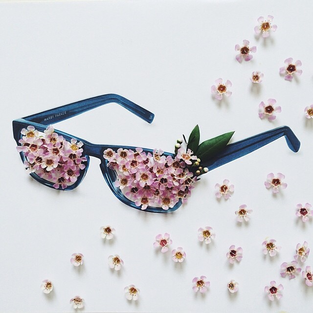 Anna Korkobcova Color Series Warby Parker.jpg