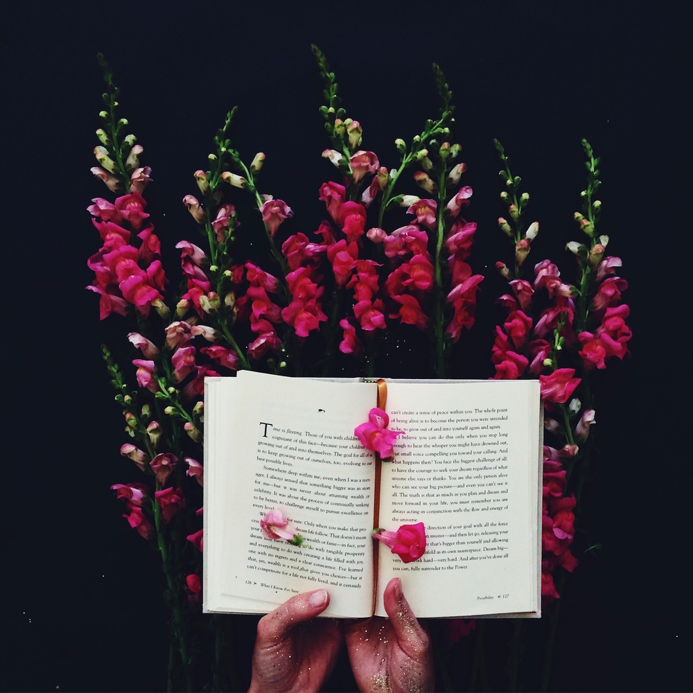Anna Korkobcova Book.jpg