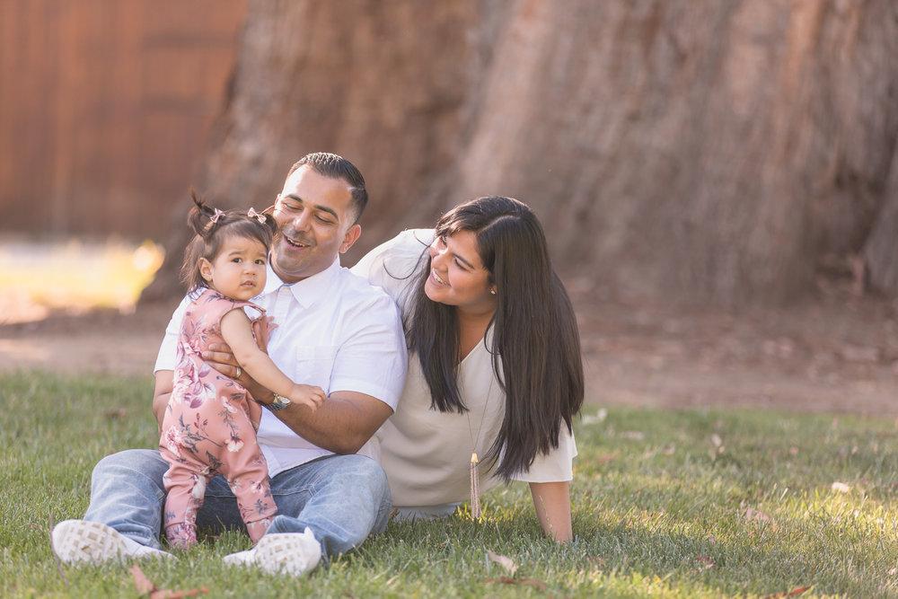 Nand-Family-0002.jpg