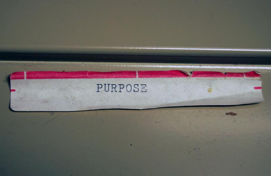 purpose v3