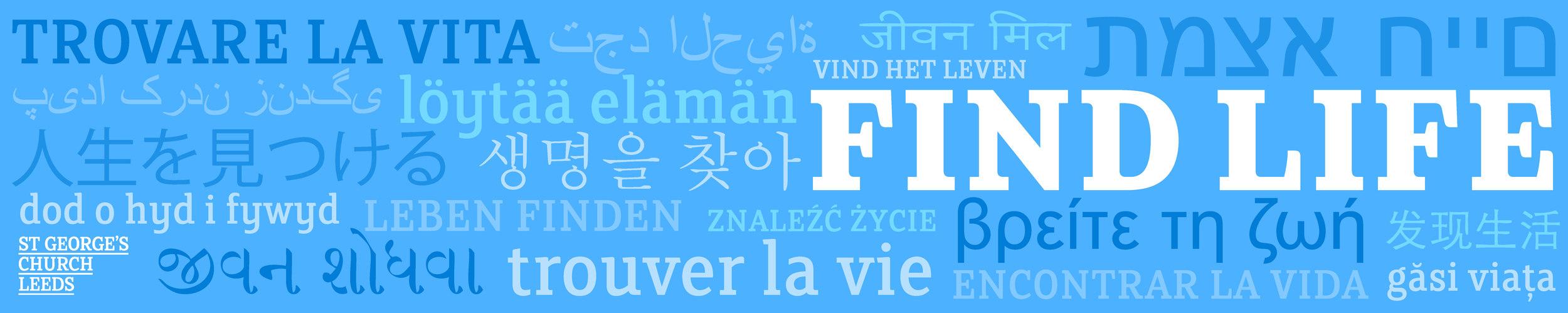 find life banner