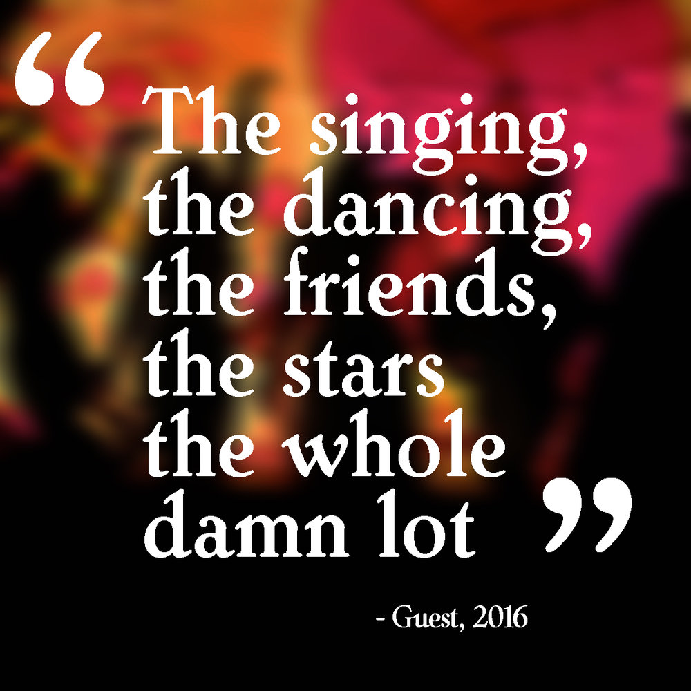 """The singing, the dancing, the friends, the stars the whole damn lot"""