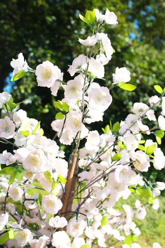 SH2014_flowers.jpg