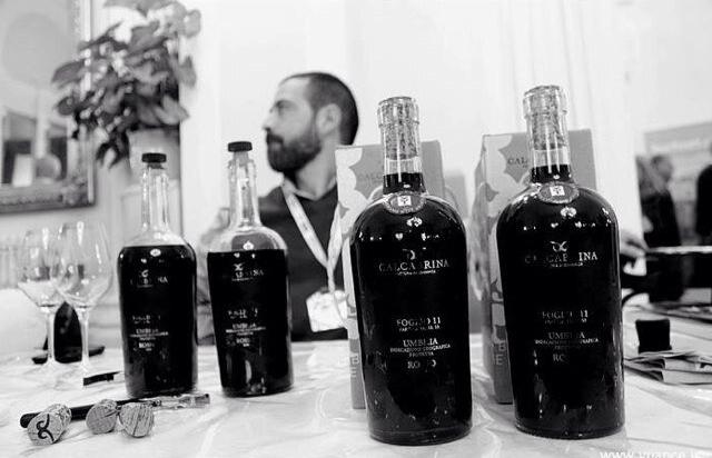 Diego Calcabrina flessen