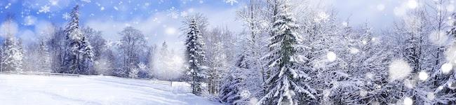 Vino Per Tutti sneeuw