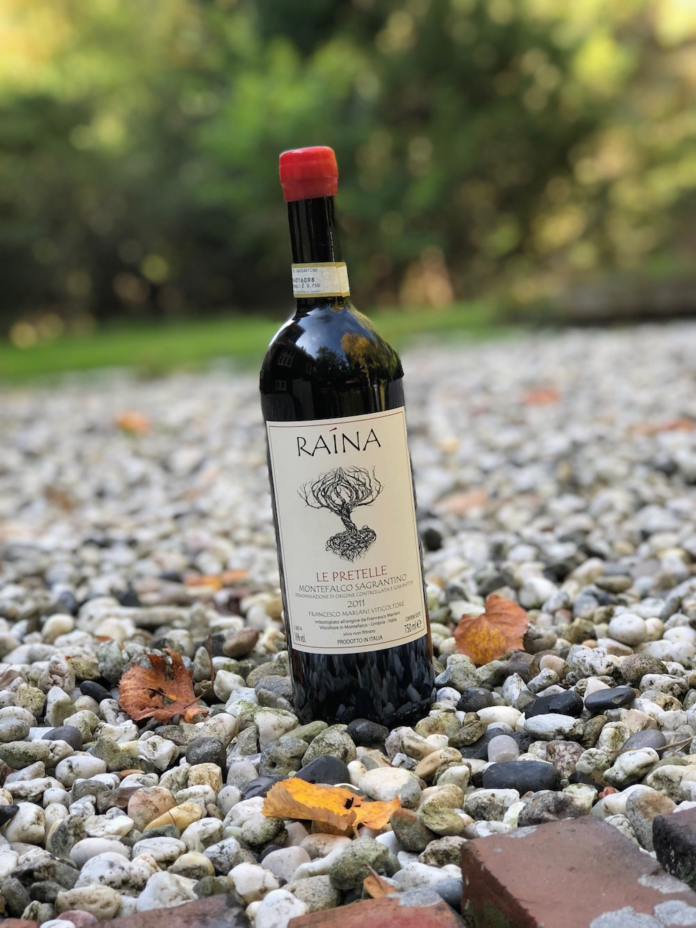 Raina Sagrantino Le Pretelle