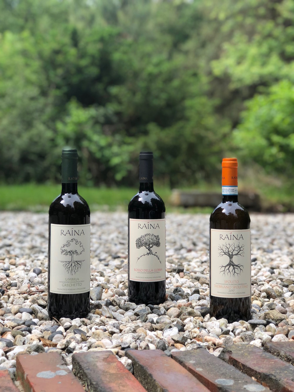 Raina wijnen