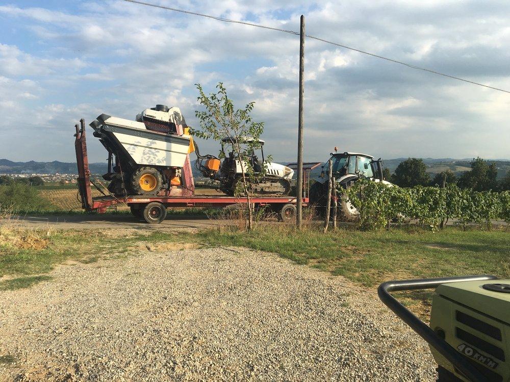 Trekker en oogstmachine onderweg naar een wijngaard waar ze het niet zo nauw met de oogst nemen.