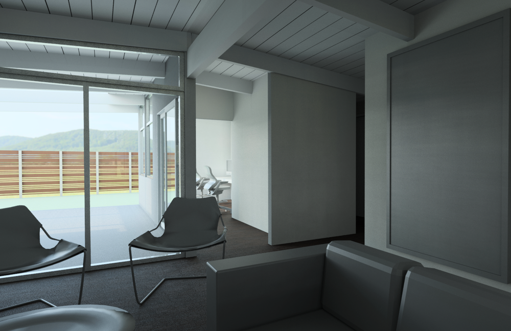 SFairfax_3D_View_-_single_large_-_looking_out_back_from_living.png