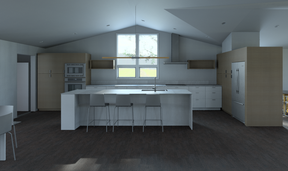 Haag-Docter-Model.rvt_2016-Jan-26_05-12-54PM-000_3D_View_-_Kitchen_from_stairs_-_light_wood.png