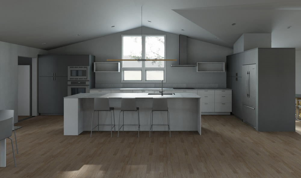 Haag-Docter-Model.rvt_2016-Jan-27_11-08-52AM-000_3D_View_-_Kitchen_from_stairs_-_light_wood_floor.png