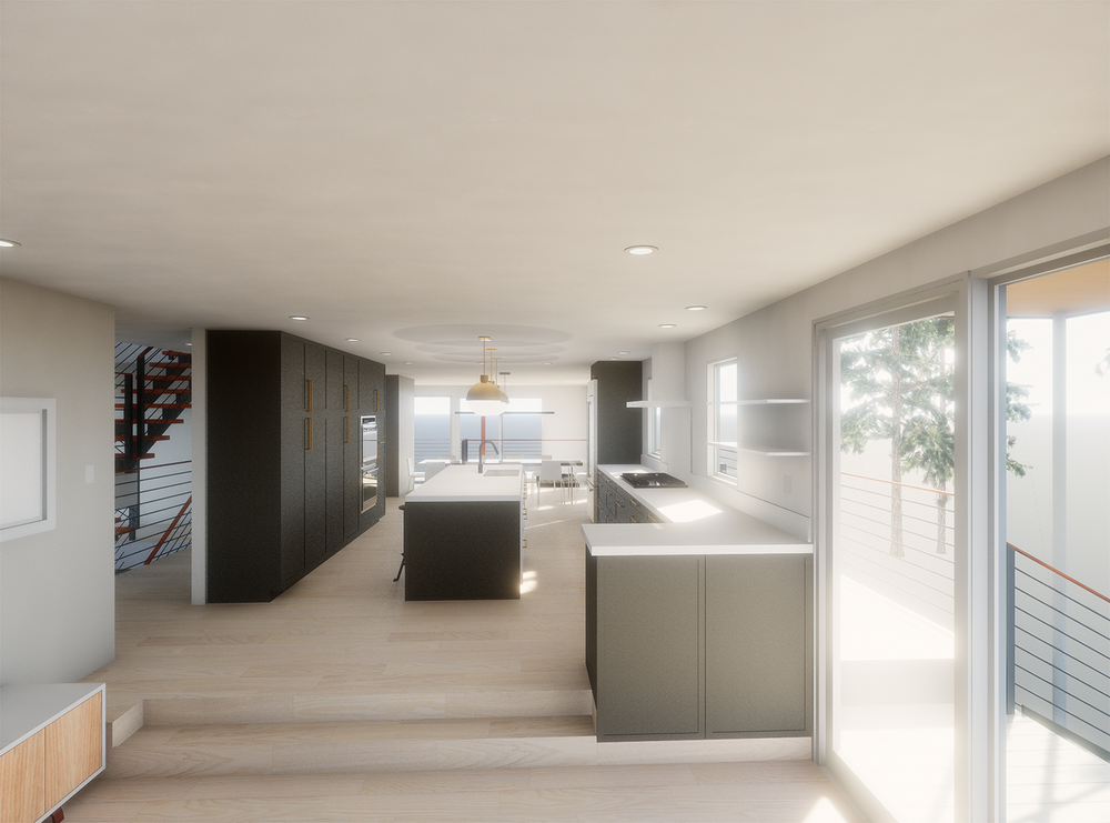 Flueck Kitchen rendering from Den_20170801 - all black.png