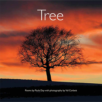 tree_bookcover.png
