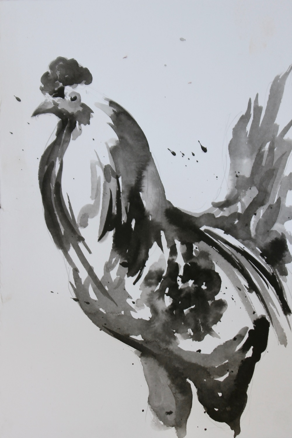 rooster in ink