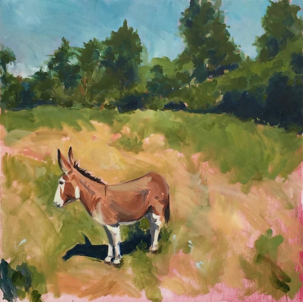 russell's mule