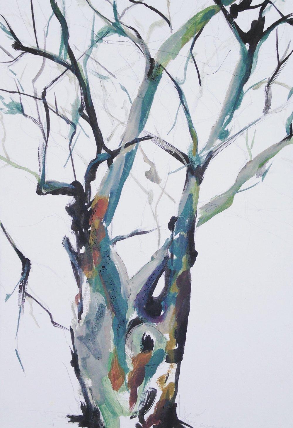 Winter tree study II
