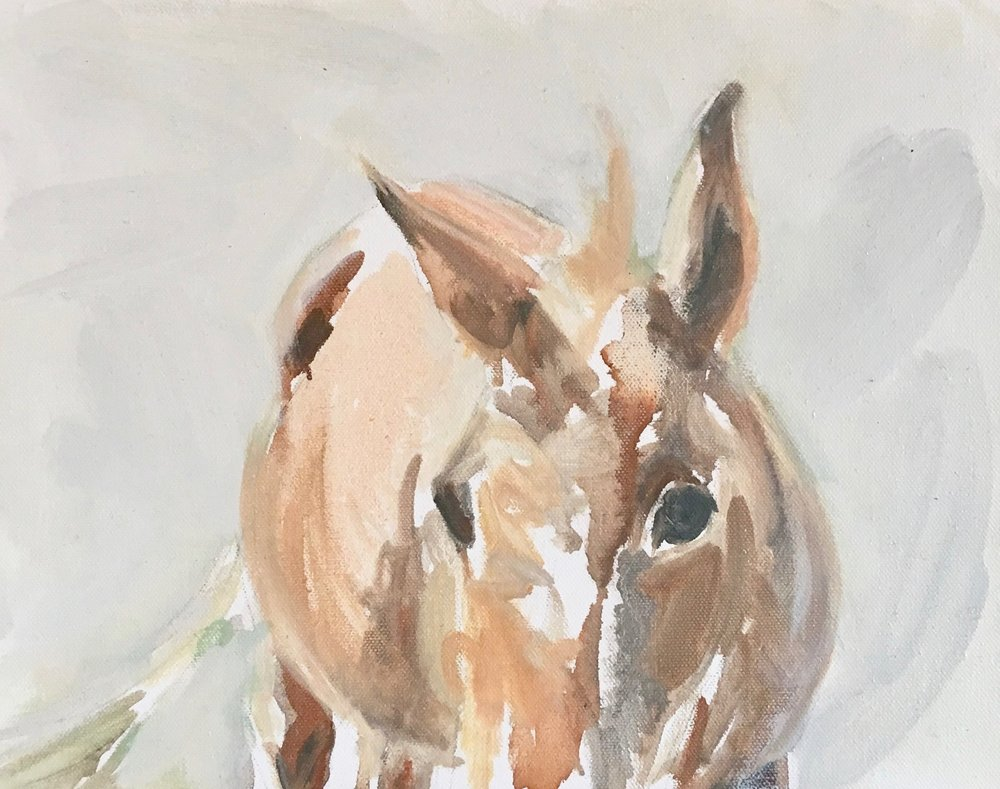 Carol's mule.