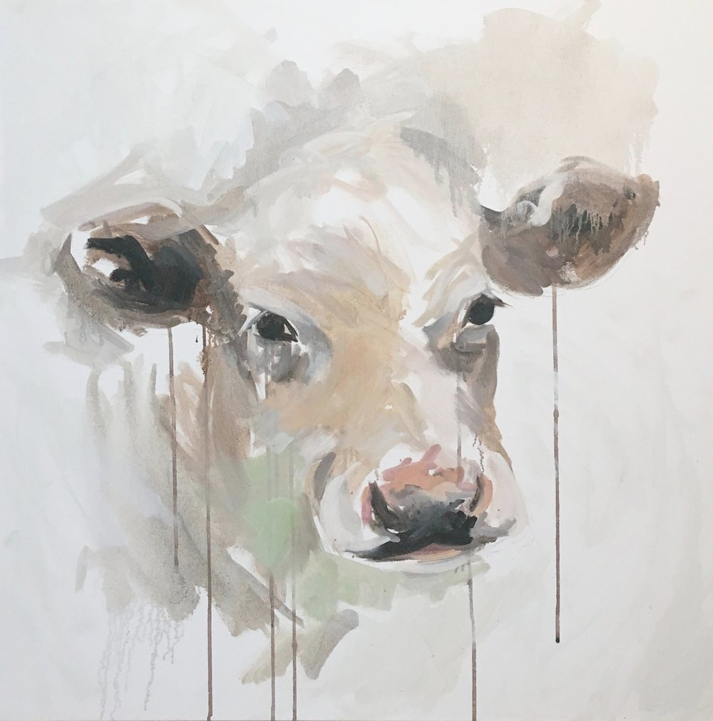 deconstructed cow