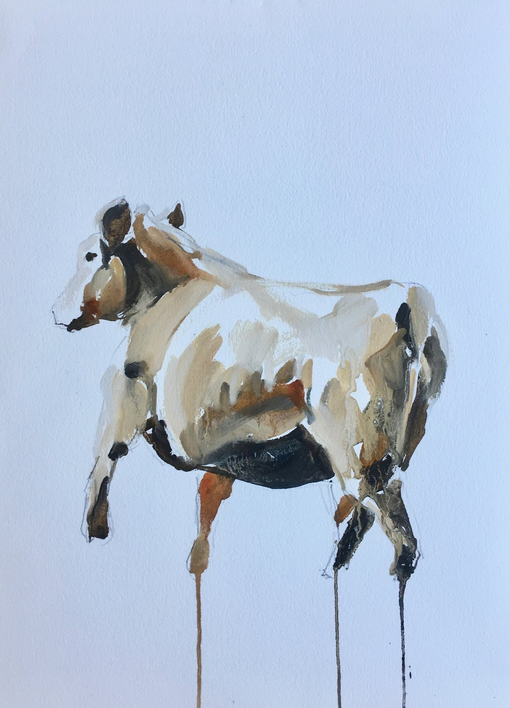 cow running II