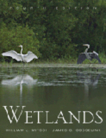 Wetlands      William J. Mitsch & James G. Gosselink + Library  + BWB  + Amazon  + Publisher