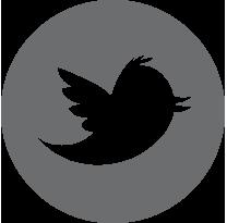 AVIH_Twitter.png