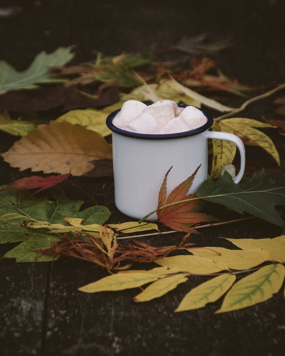 "I call it ""A Portrait Of A Hot Chocolate In The Autumn Forest"""