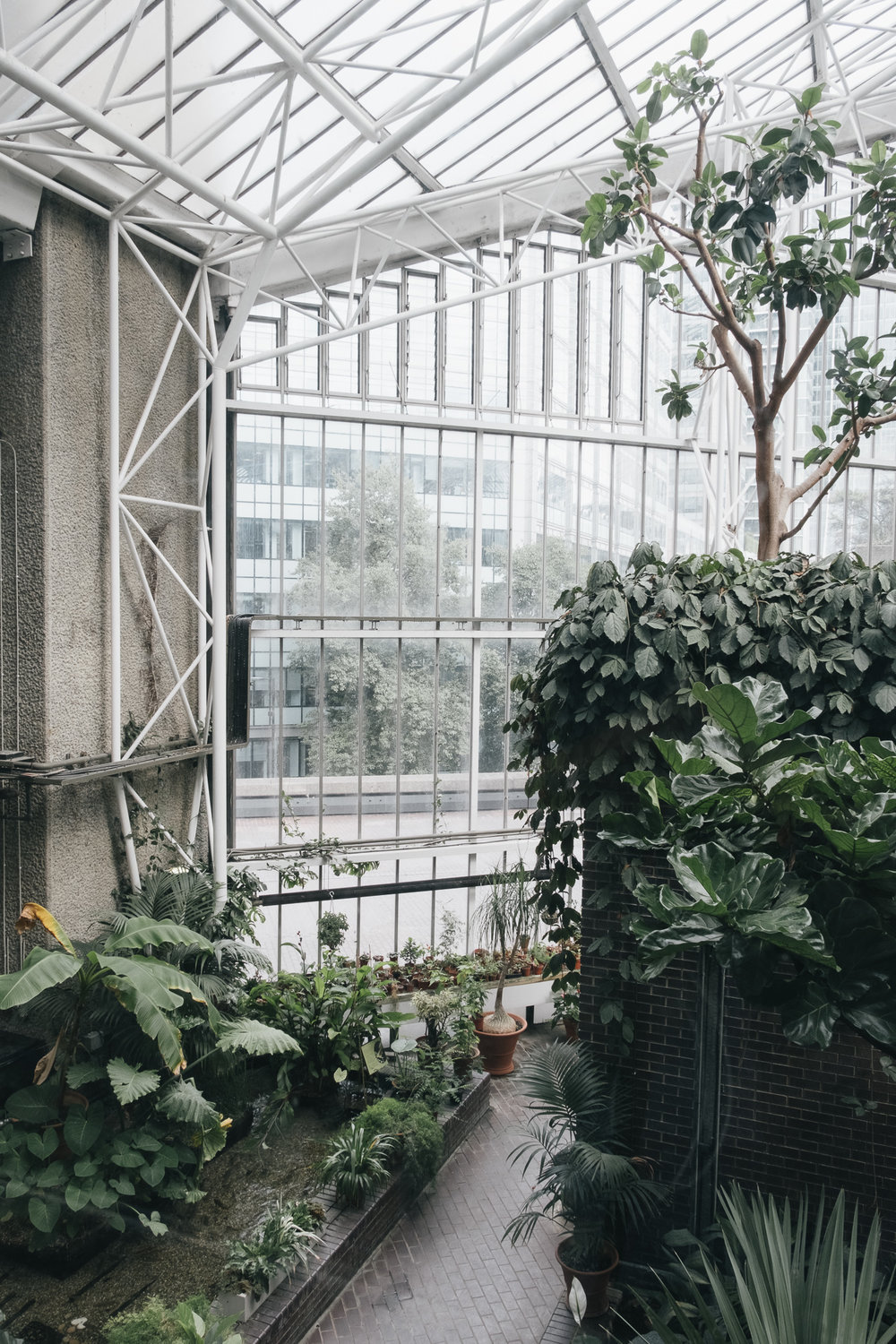 Barbican Conservatory is free to visit
