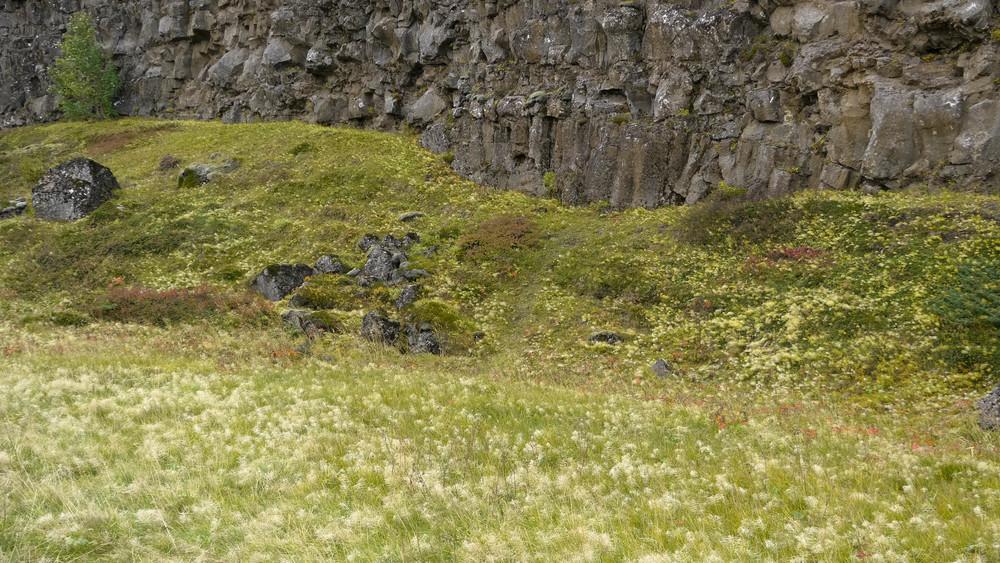 Iceland 2012-09-17at 17-31-56.jpg