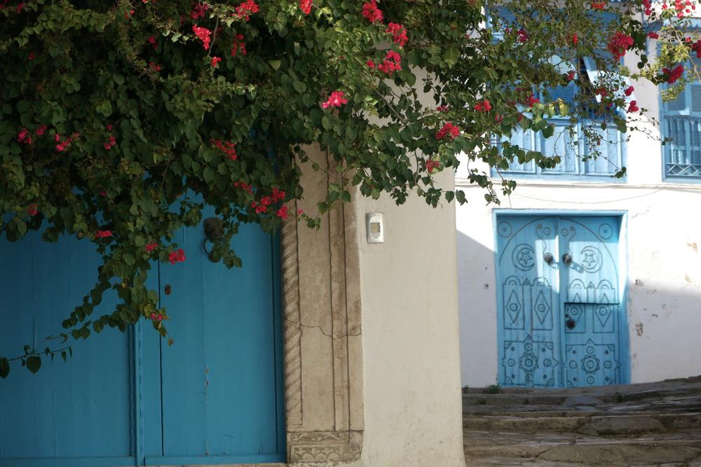 tunisie 2011-11-08at 14-30-24.jpg