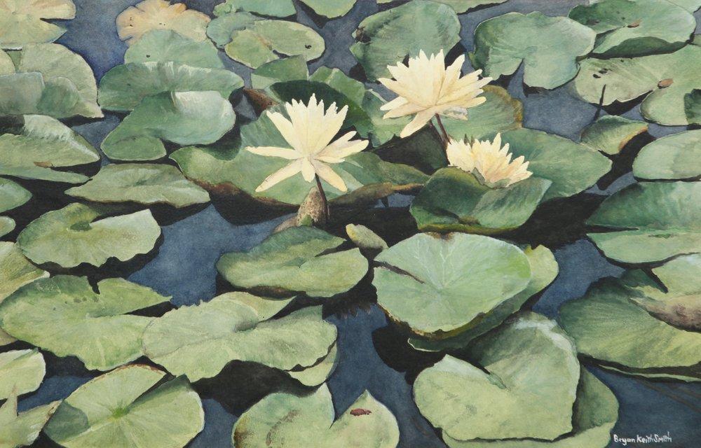 """Lily Pond I 17 1/4"""" H x 11 1/4"""" W $1500."""