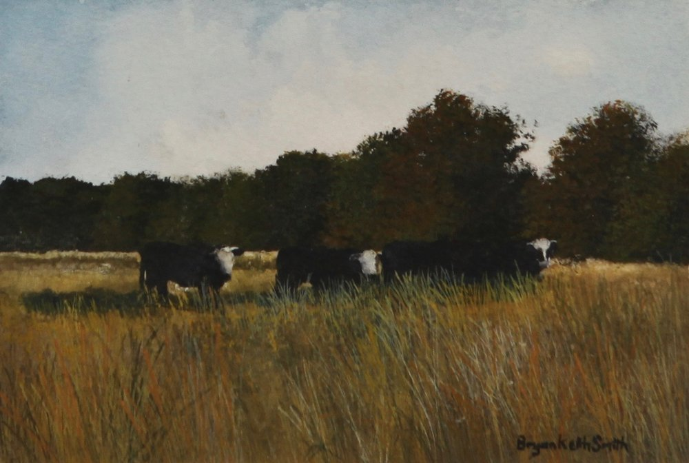 "Cows 17"" W x 15"" H   Framed $750."