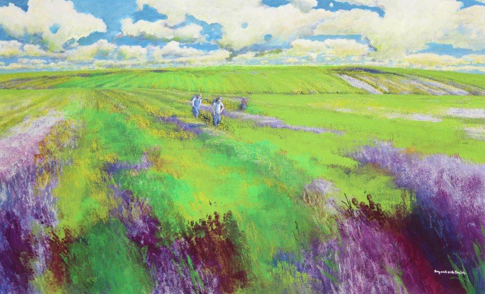 "Lavender Fields 38 1/2"" W x 23 1/2"" H $7500."