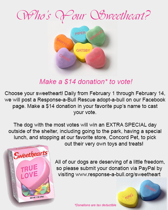 sweetheart_fundraiser.jpg