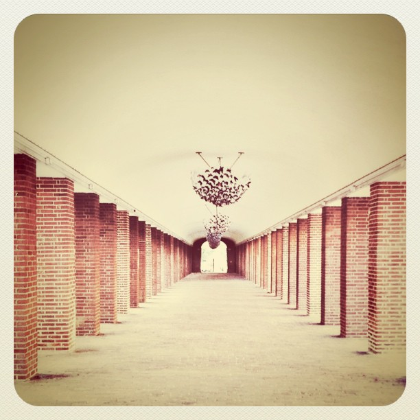 Tunnel Vision. (Taken with  instagram )