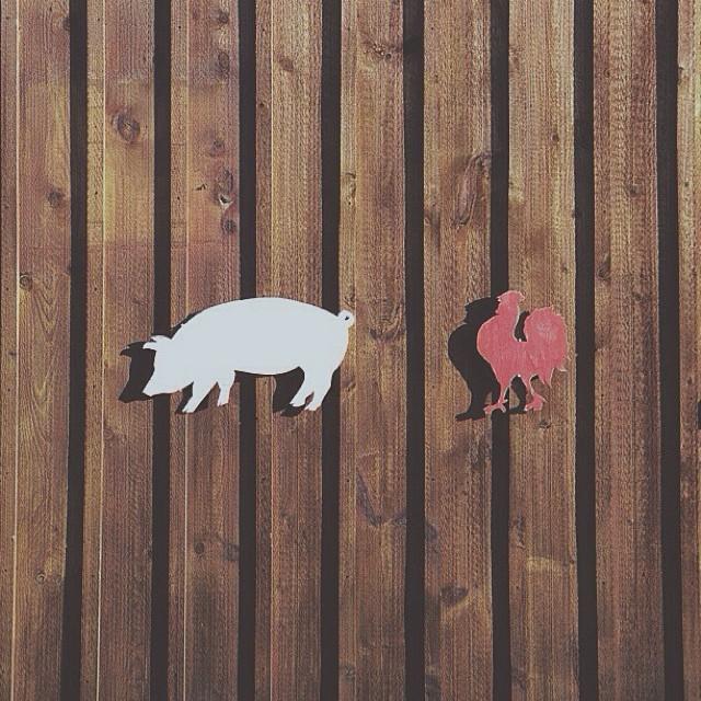 Pig + Rooster #vscocam