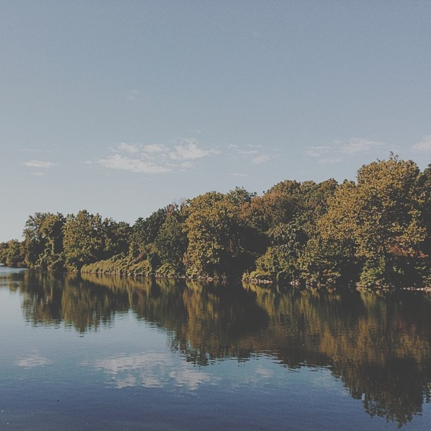 Picture perfect day. #vscocam
