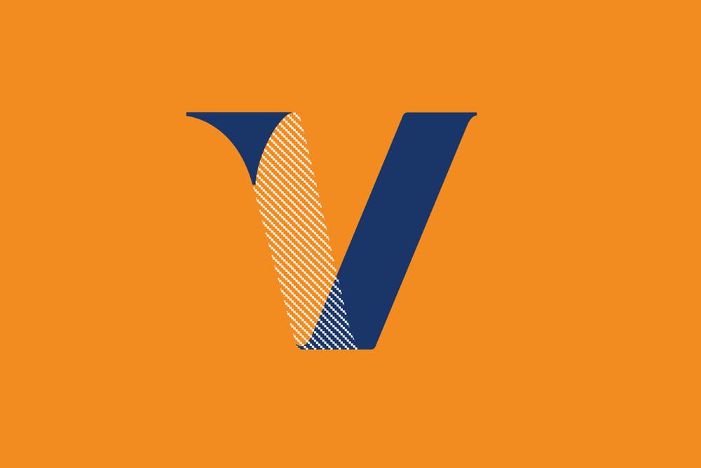 visa_icon_Flat_ORG.png