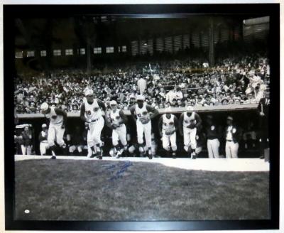 Vintage Cincinatti Reds Team Poster