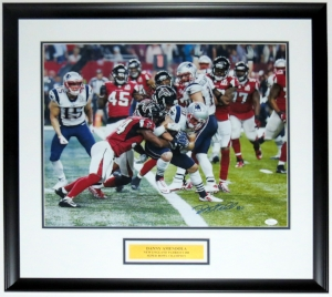 Danny Amendola Signed New England Patriots Super Bowl 16x20 Photo - JSA COA Authenticated - Professionally Framed & Plate