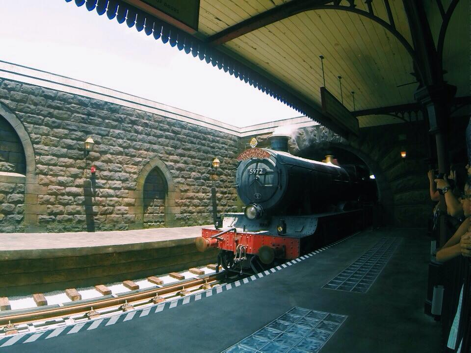 Hogwart's Express in Hogsmeade Station