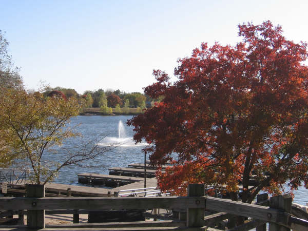 Boat dock during the fall