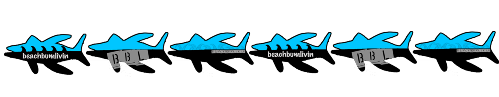 Fish strip logo - beachbumlivin