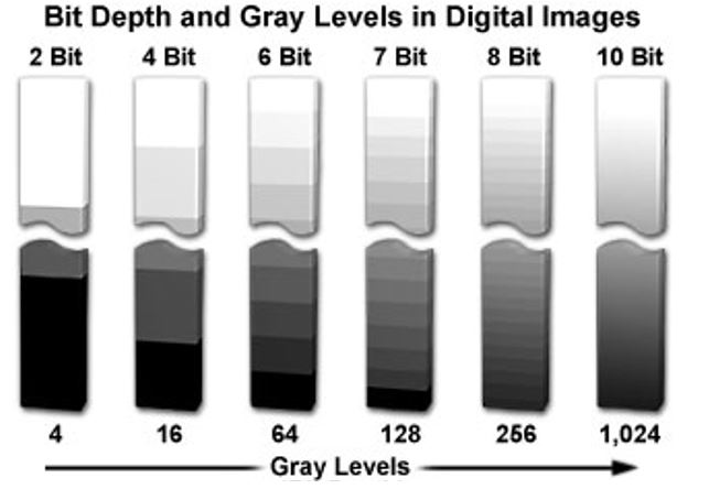 Bit Depth and Gray Levels in Digital Images.JPG