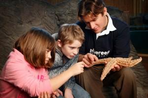 Newquay Aquarium.jpg