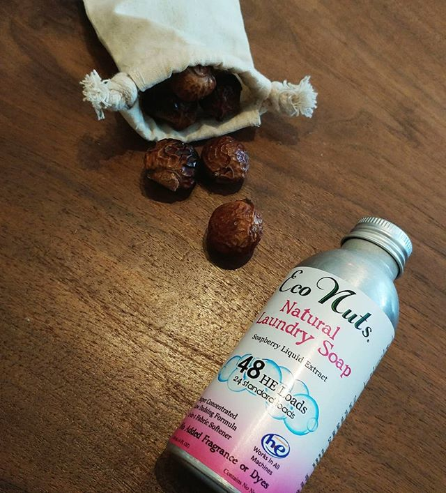 These dried berry like things are called soap berries! Toss 4-5 in this little bag and do your laundry as you normally would or use The Soapberry Liquid Extract. A great and simple solution for a happy healthy home. @econuts #cleanliving #shoplocal #bloorwest #northwoodgeneral #soapberry