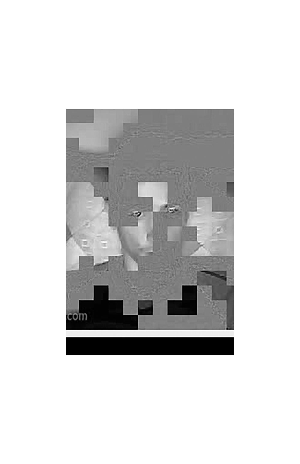 Ledger 22.jpg